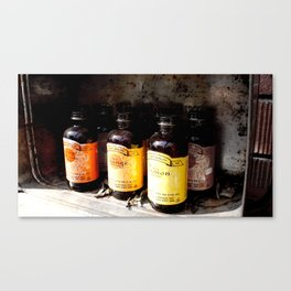 Extracts Canvas Print