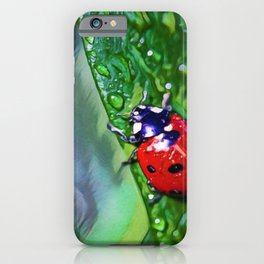 Ladybug Leaf | Painting  iPhone Case