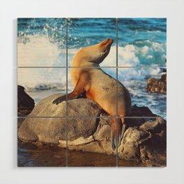 SeaLion Mermaid Wood Wall Art