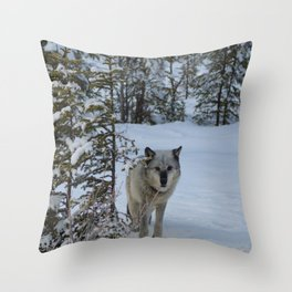 Lone wolf in the snow Throw Pillow
