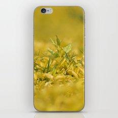 Yellow, Yellow, Super Fellow iPhone & iPod Skin