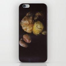 Ranunculus Still Life iPhone Skin