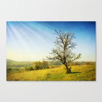 forever young Canvas Prints featuring Forever young by Dragos Dumitrascu
