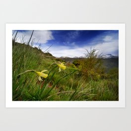 """Narcisus Nevadensis"". Mountain Endemic flower  Art Print"