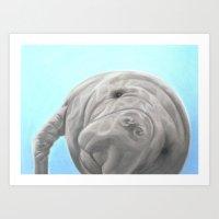 Joe the Manatee - Pastel Portrait Art Print