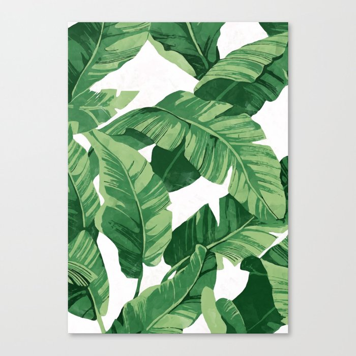Tropical banana leaves IV Canvas Print