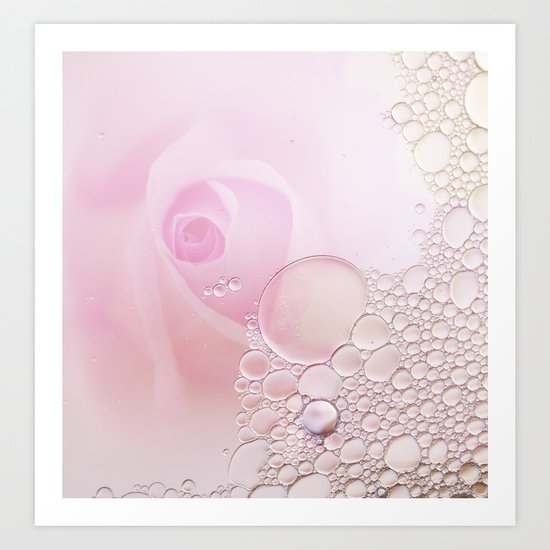 Rose and waterdrops Art Print