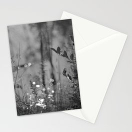 Summer Afternoon by the Pond in New Hampshire Stationery Cards
