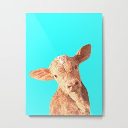 Baby Cow Turquoise Background Metal Print