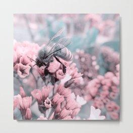 Honey Bee on Pale Pink Flowers Metal Print