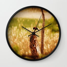 Bird Photography Wall Clock