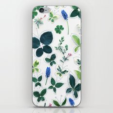 Nature Butterfly Pattern 1 iPhone & iPod Skin