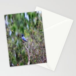 Perilously Perched Stationery Cards
