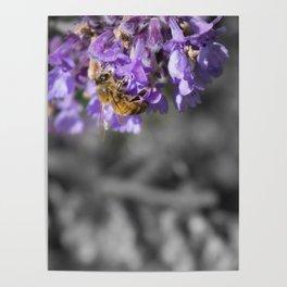 Bee Love Poster