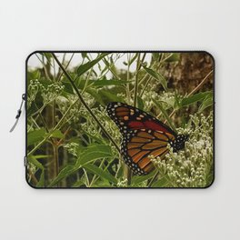 Feeding butterfly Laptop Sleeve