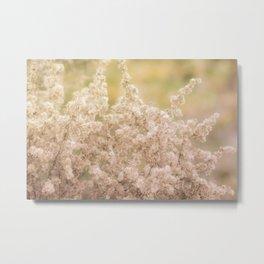Romantic  Desert Broom Metal Print