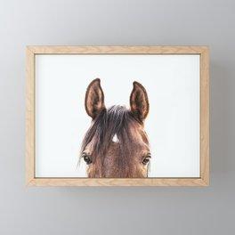peekaboo horse, bw horse print, horse photo, equestrian, equestrian photo, equestrian decor Framed Mini Art Print
