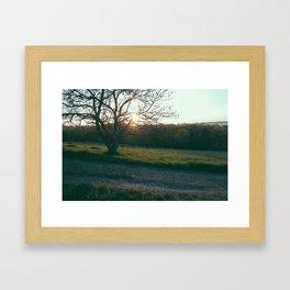 Morning Glow Framed Art Print