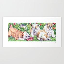 English bulldogs - The ballgame is over Art Print