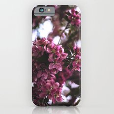 SPRING BLOSSOMS Slim Case iPhone 6s