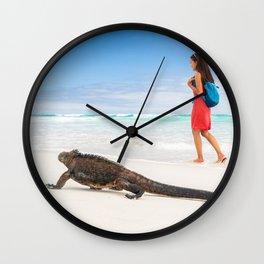 Galapagos wildlife beach Wall Clock