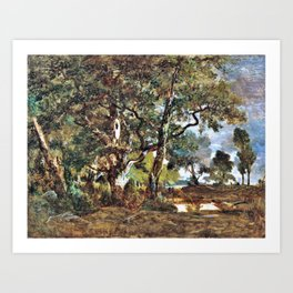 Forest Of Fontainebleau - Theodore Rousseau Art Print