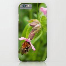 The Pollinator Slim Case iPhone 6s