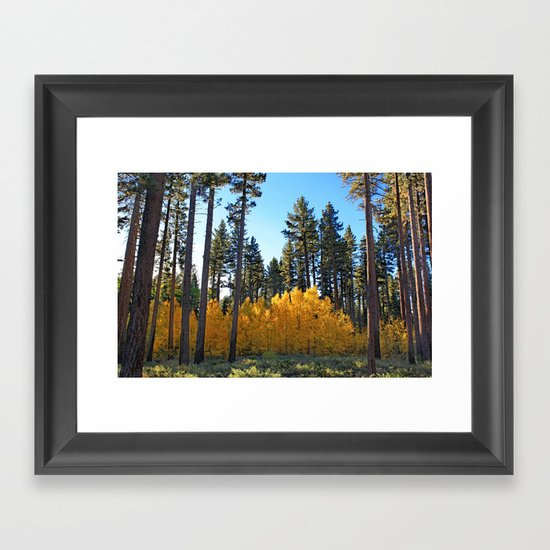 Fall Foliage Framed Art Print