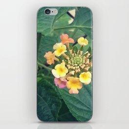 Tiny beauty iPhone Skin