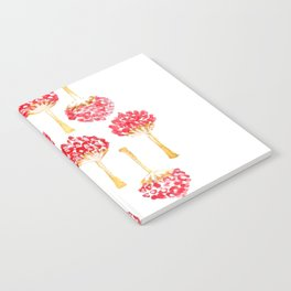 Seed Pod Notebook