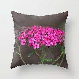 Spur Pink Flower Throw Pillow