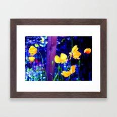 Yellow Poppies  Framed Art Print