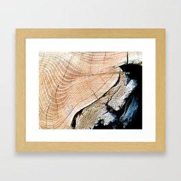 WOOD TEXTURE II Framed Art Print