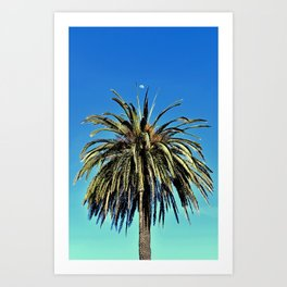 Moon + Palm Tree in Capitola, CA Art Print