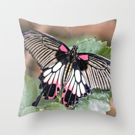 Majestic Tropical Butterfly Throw Pillow