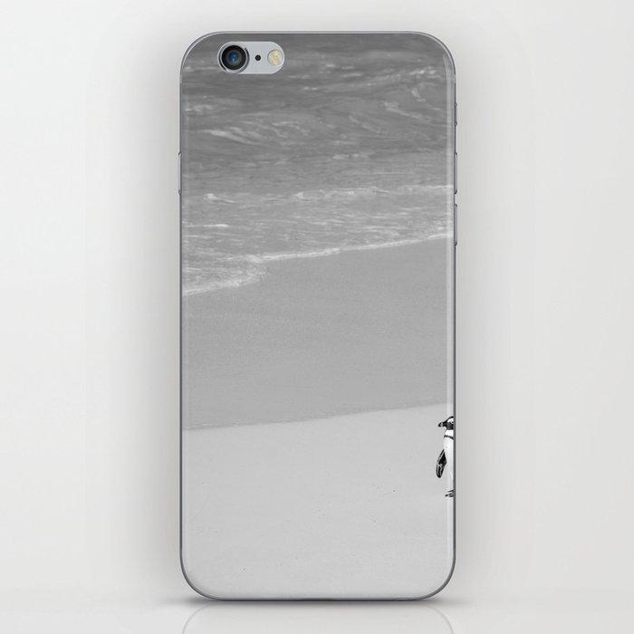 Lone African Penguin walking on beach iPhone Skin