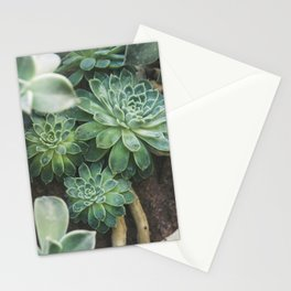 Botanical Gardens - Succulent #625 Stationery Cards