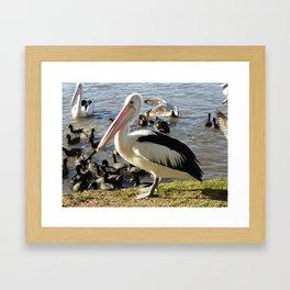 Bird Gatherings Framed Art Print