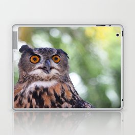 Hoot Laptop & iPad Skin