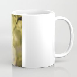 Bask in the Warmth Coffee Mug