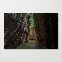 Via Cava, - ancient Etruscan path cut in tuff Canvas Print