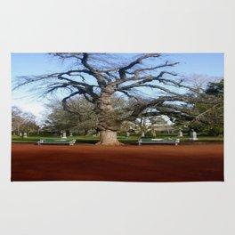 Elm Tree Rug