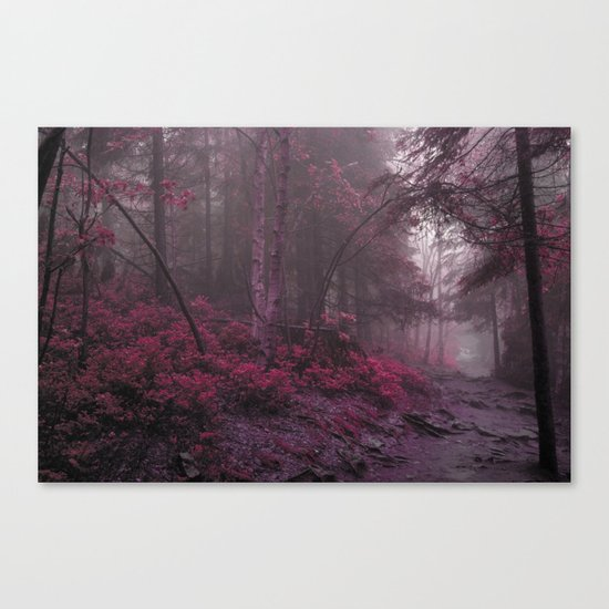 Fantasy Forest #woods Canvas Print