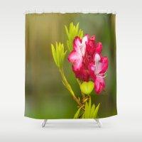iggy azalea Shower Curtains featuring Azalea by Jonah Anderson