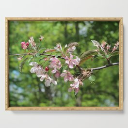 Light Pink Crab Apple Tree Branch Serving Tray