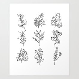 Hand Drawn Leaves Sketch Collection Art Print