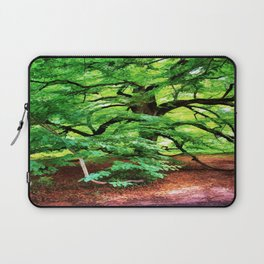 Century Oak Tree Laptop Sleeve