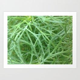 Wire Plant Art Print