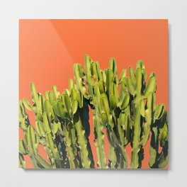 Bold Cactus #society6 #cactus #buyart Metal Print