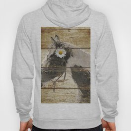 Daisy Flower on Rustic Brown Cream Horse Country Barn Art A166 Hoody